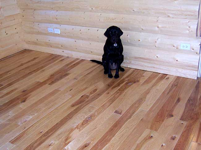4 inch rustic birch flooring with micro-beveled sides